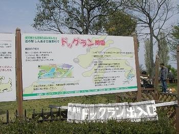 Imgp3394